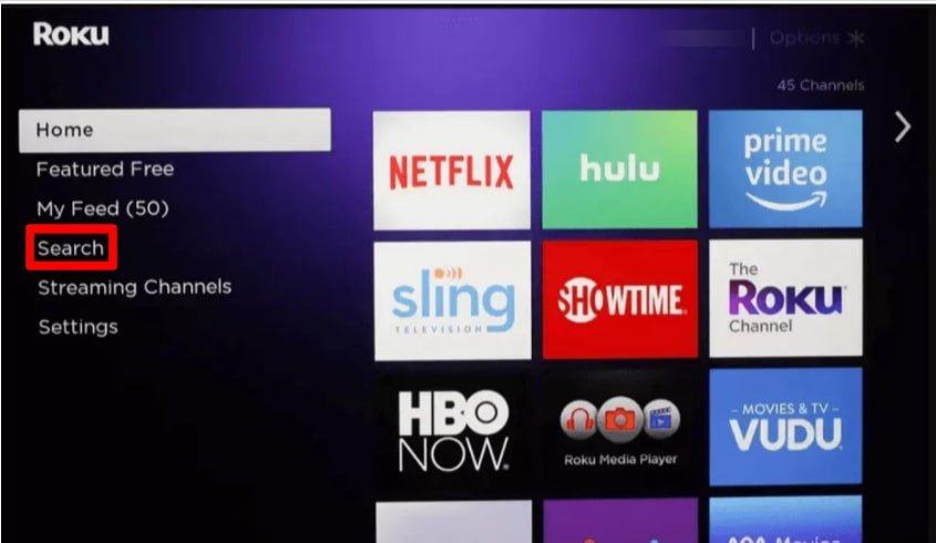 'search' option in roku